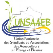 Logo_Unsaaeb