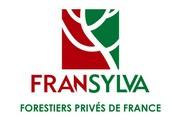logo fransylva